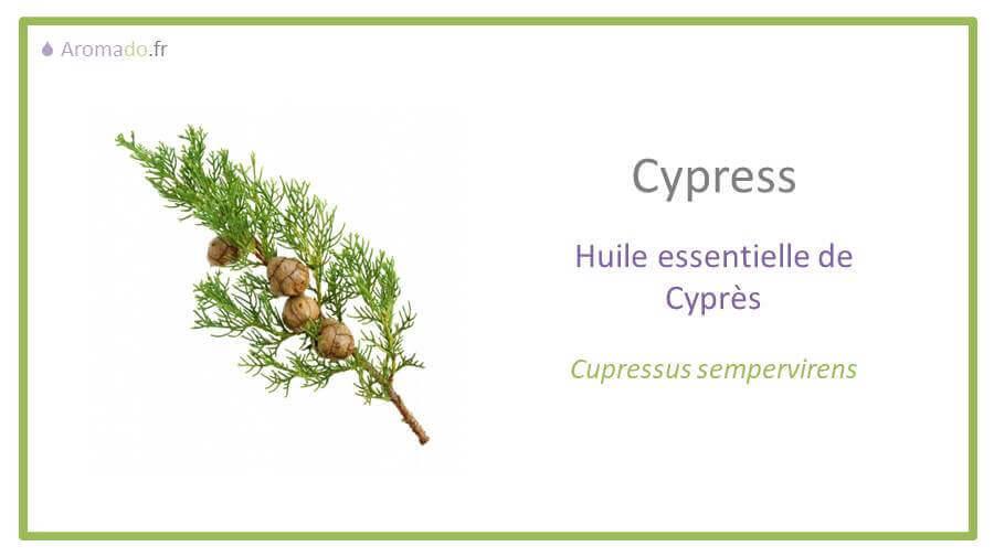 he cyprès est une huile essentielle 100% pure