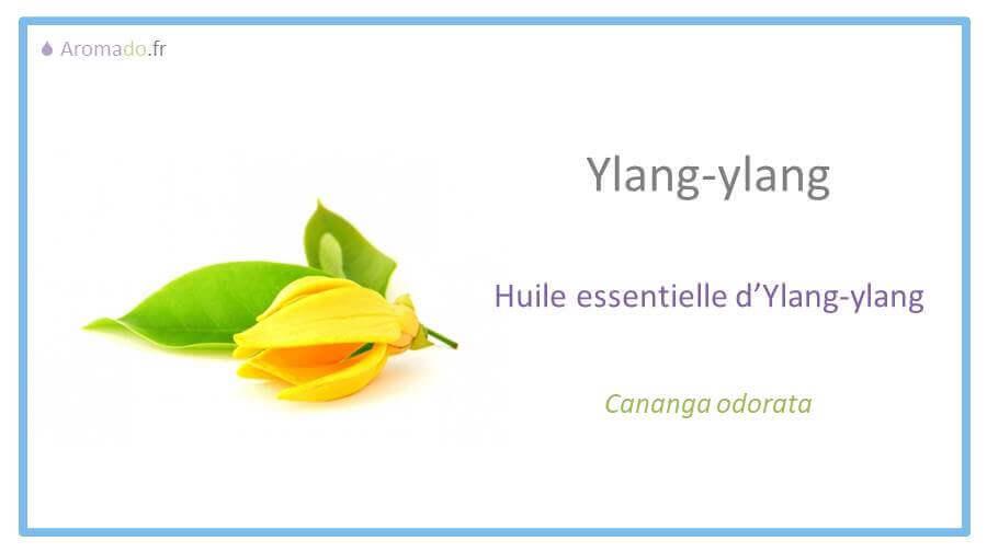 he ylang ylang ou huile essentielle d'ylang-ylang
