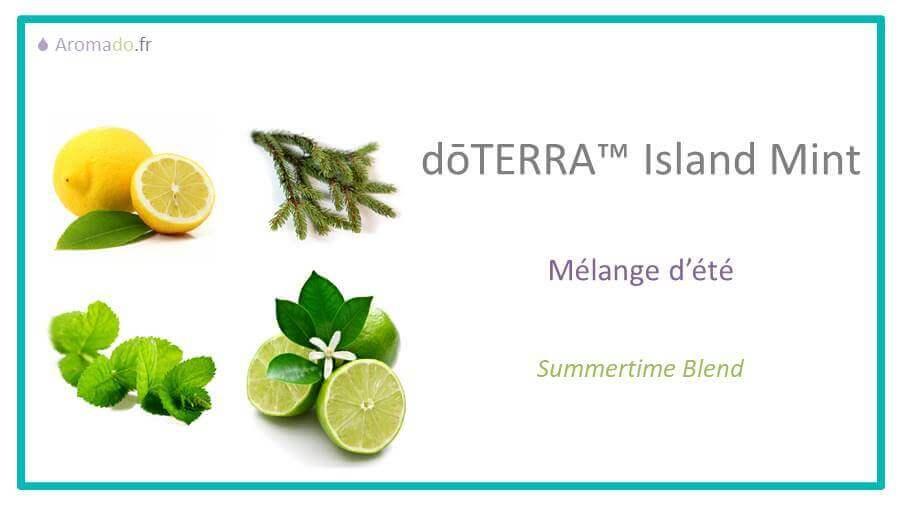 island mint est une huile essentielle de doterra, description en francais