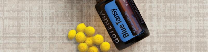 les huiles essentielles doterra, blue tansy