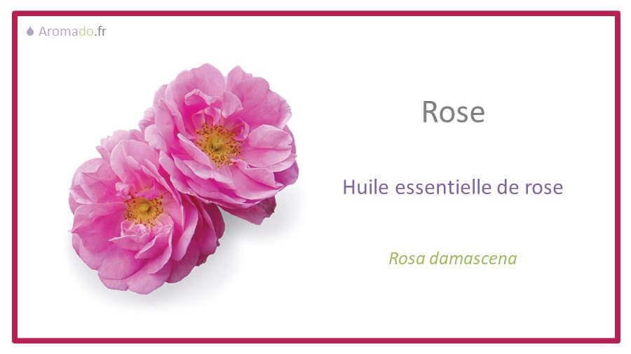 rose doterra