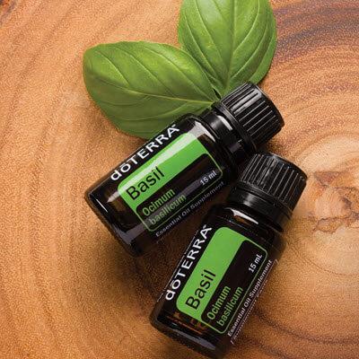 huile essentielle de basilic proposée par doTERRA