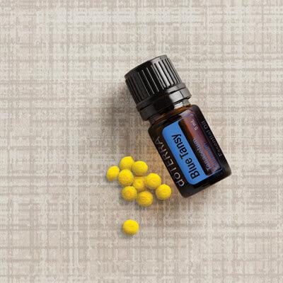 Blue Tansy, l'huile essentielle de Tanaisie bleue