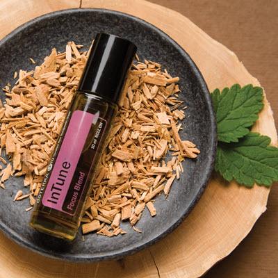 La synergie d'huiles essentielles InTune proposée par doTERRA est un mélange pour la concentration